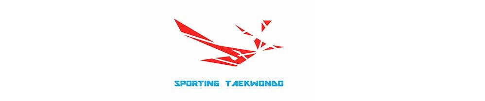 SPORTING Taekwondo bildet Trainer fort – Auch bereits vorhandener Erfolg lässt sich weiter ausbauen