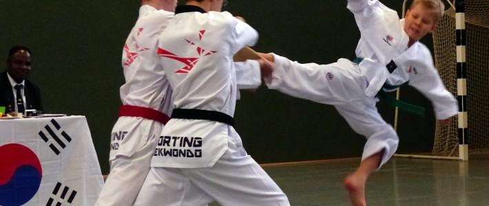 In 7 Gruppen absolvieren SPORTING-Kämpfer ihre Gürtelprüfung