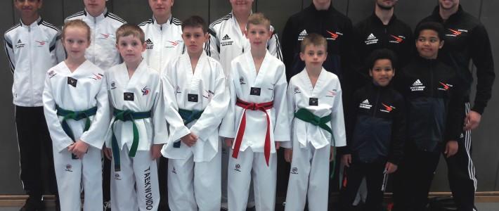 Ausbeute für SPORTING Taekwondo beim Becketal-Cup