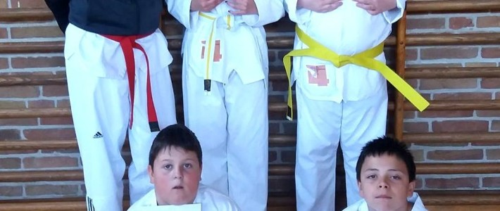 SPORTING Taekwondo führt weitere Prüfung in der Schulkooperation durch