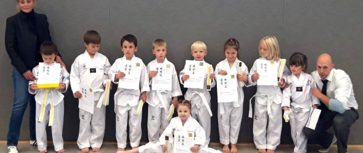 SPORTING Taekwondo Anfängerkurs legt erste Prüfung ab